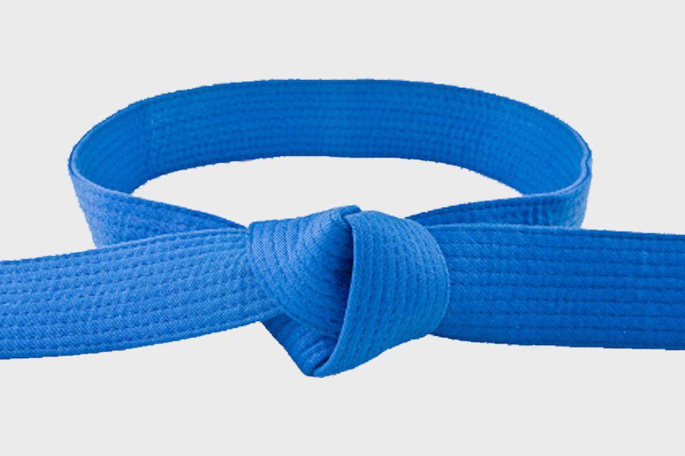 Curs Anual Intermediari - centura albastră și diploma de instructor