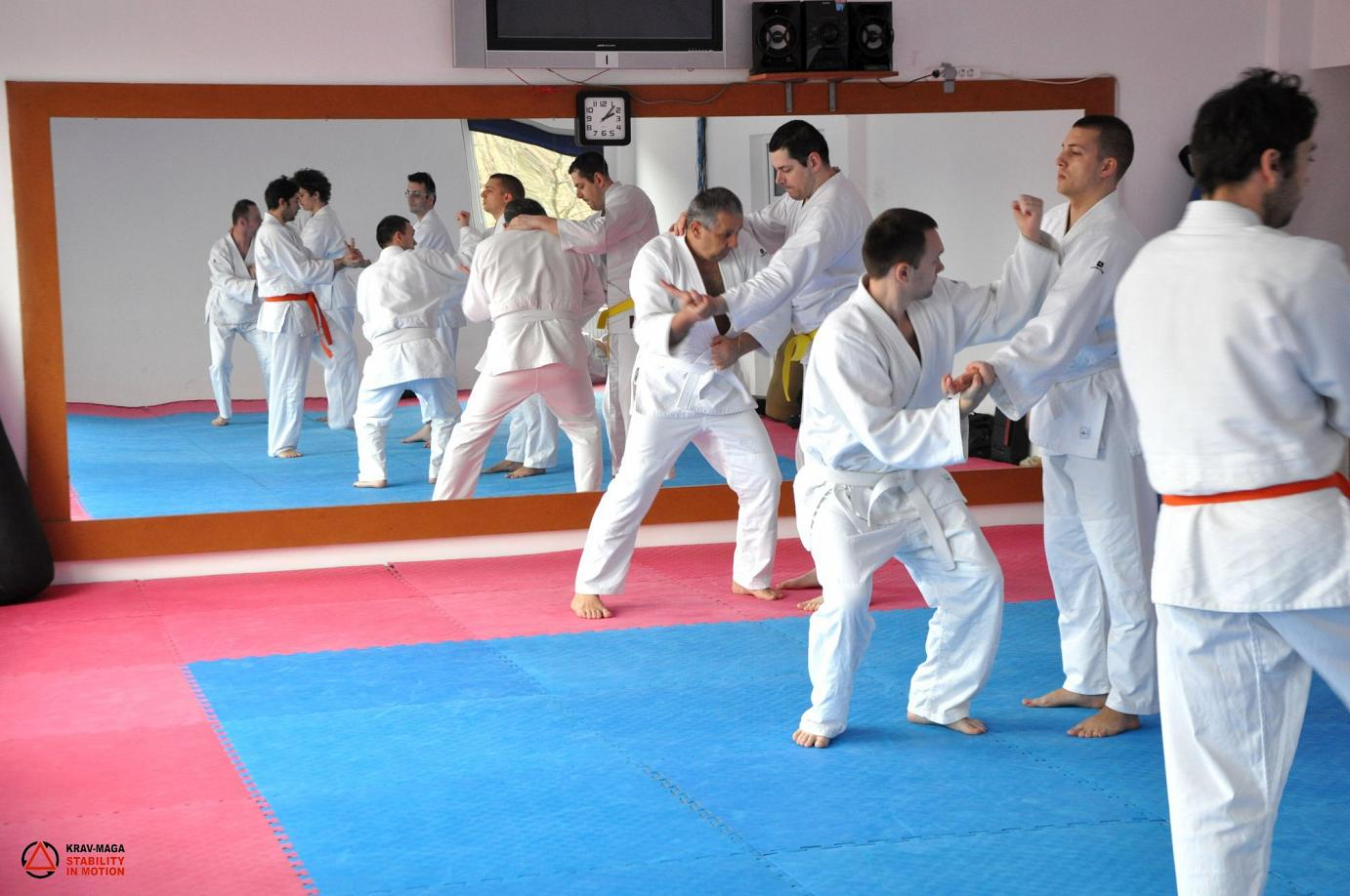 Annual Course for beginners - yellow belt